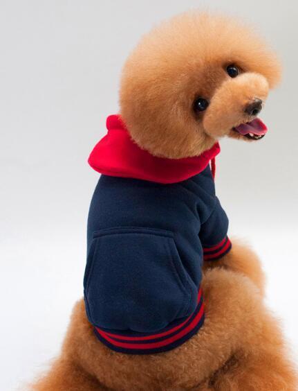 Dog's jacket, pet's jacket, pet's jacket, pet's sportswear, teddy bear dog's clothes