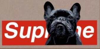 taille: 19X3.9CM NEW YORK logo de luxe chemise de style pour animaux de compagnie chaleur transferts de fer sur des correctifs pour sac à chaussures T-shirt Applications pour vêtements bricolage chemise