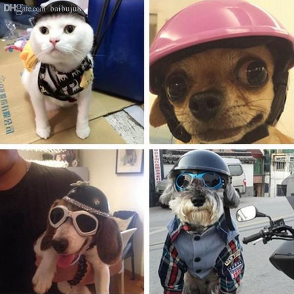 Wholesale-1pcs animali domestici caschi ridding cap bel cappello da motociclista ABS cagnolino cucciolo moto proteggere per lo sport bel cane costumi gatto S3
