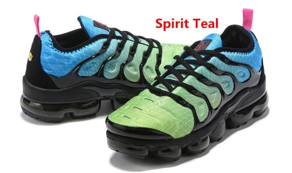 Spirit Teal