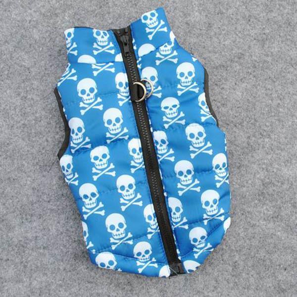 Crânio azul