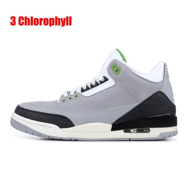 3 Chlorophyll