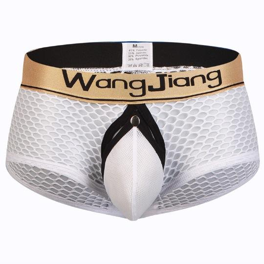 # 2025PJ Venta al por mayor Ropa interior súper sexy para hombres gays lencería malla agujeros transparente transparente recorte boxers calzoncillos bragas envío gratis