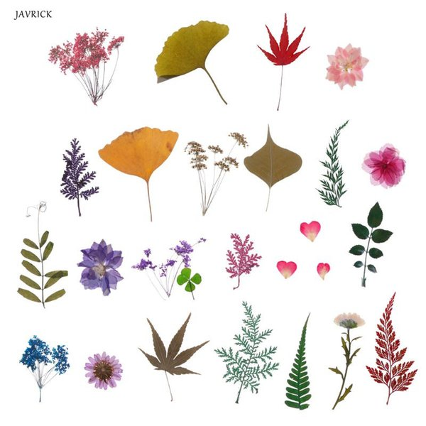Mix Pressed Flower Leaves Plant Specimen Fillers for Epoxy Resin Jewelry Making Tool Accessories