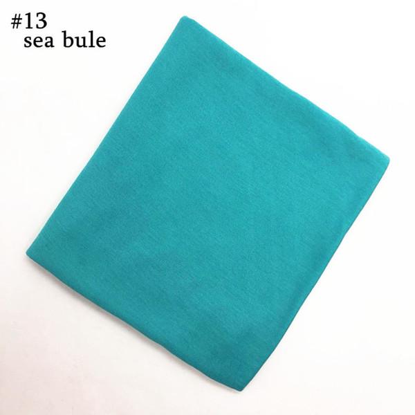 number 13 color
