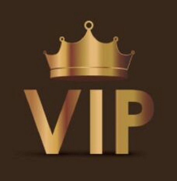 best selling payment for VIP buyer111