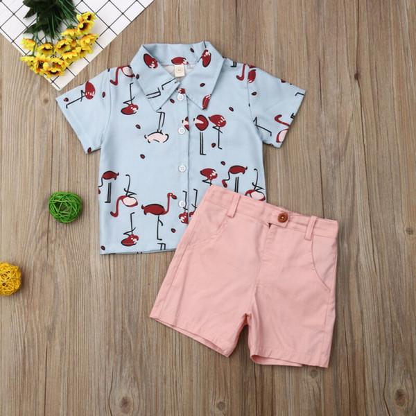 UK 2pcs Toddler Kids Baby Girls Flamingo Shirt+Summer Pink Short Casual Outfits