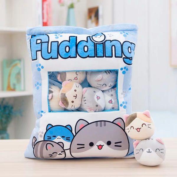 8PCS 블루 고양이