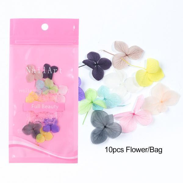 Flor seca 10pc bolsa