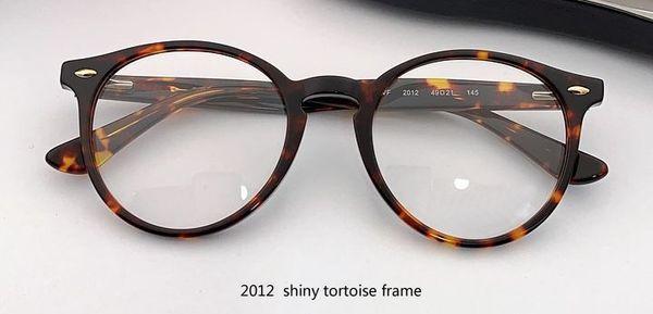 2012 brillante tortuga