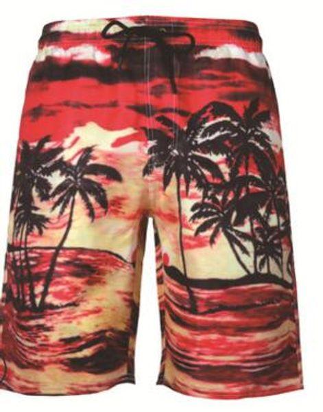 Beach pants 13