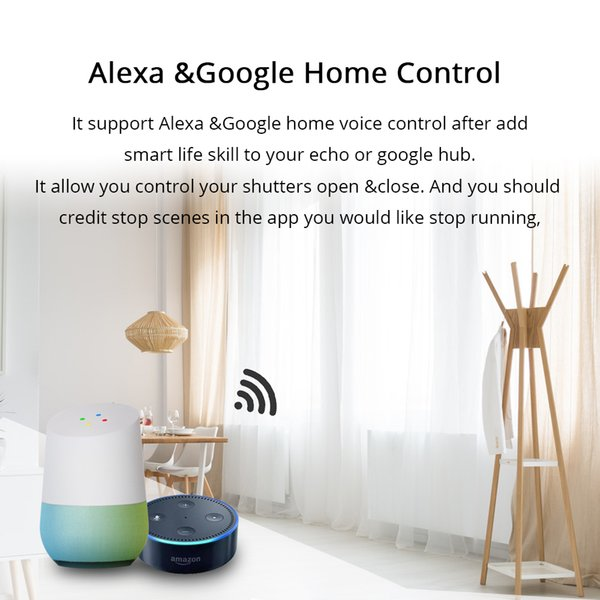 Zemismart Google Home Alexa Echo Curtain Switch Blind Switches For Standard  Roller Motor Slide Engine Wifi APP Siri Control Activity Trackers Best