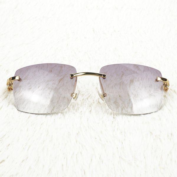 Purple Square Lenses