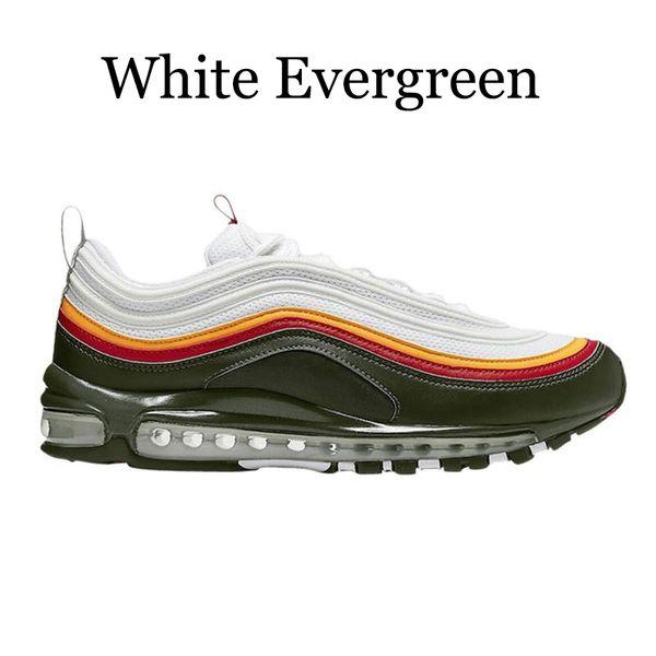 blanc Evergreen