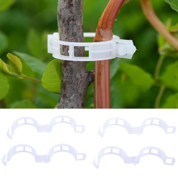 Tomate Veggie Garden pas cher Escrime soutien Clips pour effet de serre Jardin usine durable Clippez 30mm en plastique clip plante
