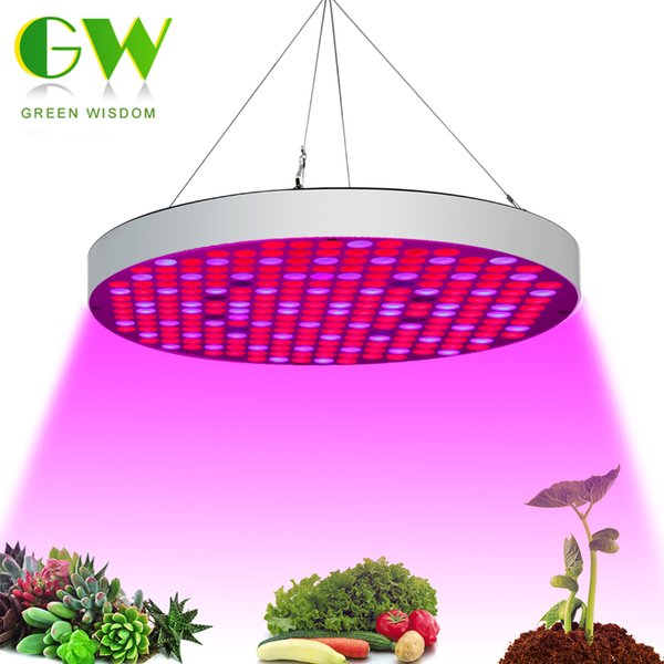 LED Grow Light 25W 40W 50W Full Spectrum For Indoor Greenhouse ... Grow Light Indoor House Plant Html on indoor orange tree leaf, boston fern care indoor plant light, 3 tier plant stand grow light, indoor plants grow without soil, indoor house plants trees, dracaena house plant low light, indoor plants that can grow in water, indoor houseplants fern, indoor green plants with heart shaped leaves, indoor green plant name,