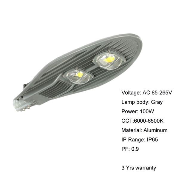100W Gray 6000-6500K