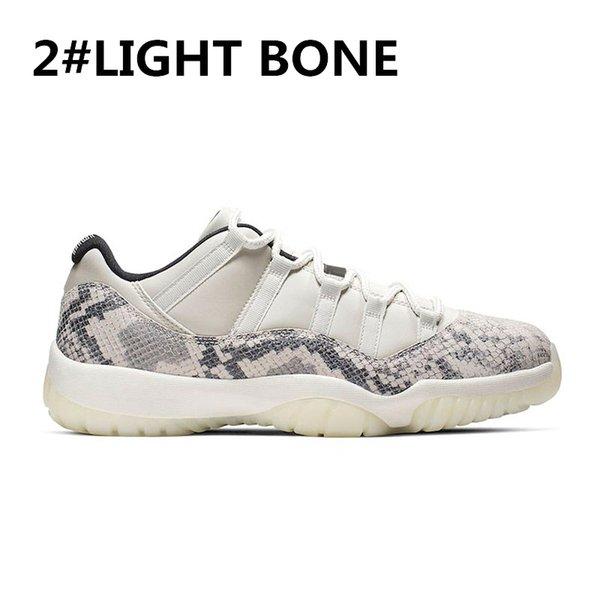 2-LIGHT-BONE