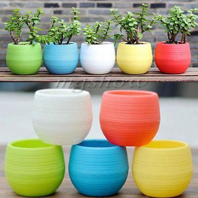 2019 Atacado Vaso De Flores De Plástico Succulent Plant Flowerpot Para Home Office Decoração 4 Cor Jardim Suprimentos