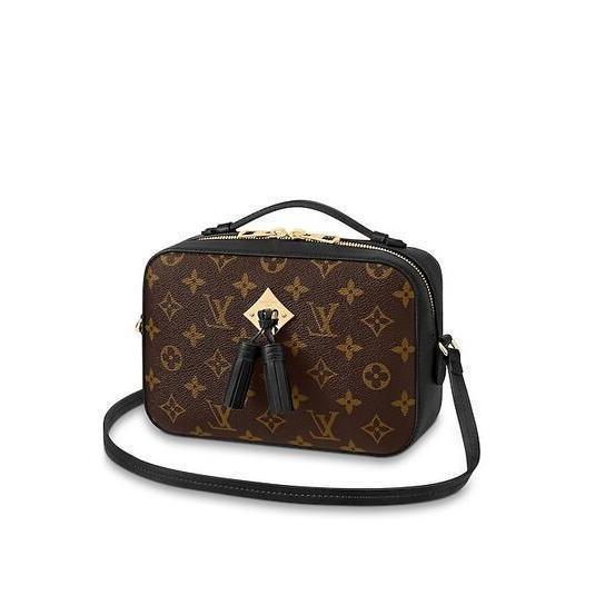 2019 2019 M43555 Saintonge WOMEN HANDBAGS ICONIC BAGS TOP HANDLES SHOULDER BAGS TOTES CROSS BODY BAG CLUTCHES EVENING