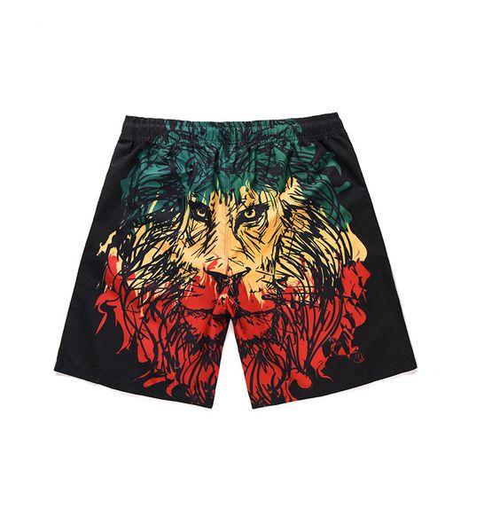 Mens 3D Leão Impresso Swim Shorts 19ss Verão New Casual Beach Board Shorts