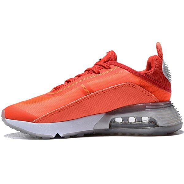 B19 36-45 Orange