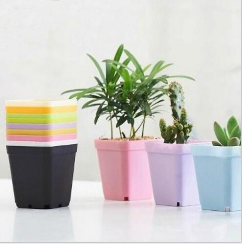2019 Fashion Succulent Plants Garden Pot Pelvic Floor Leaking Hole Design Square Planters Firm Durable Pastic Flowerpot Pink Blue H056