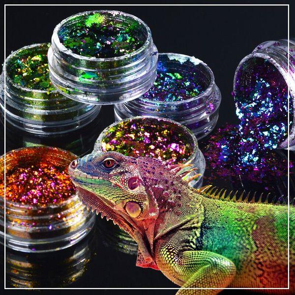 Art 1 boîte Chameleon Nail Sequins Paillettes Poudre holographique Poussière Éblouissante Transparent Manucure Nail Art Paillettes Décoration