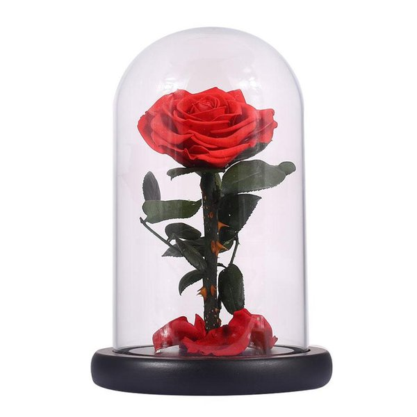 Couvercle en verre Rose frais Préservée Fleur Rose Flores Barbed Pour mariage Mariage Accueil Fête Décoration St Valentin Cadeau