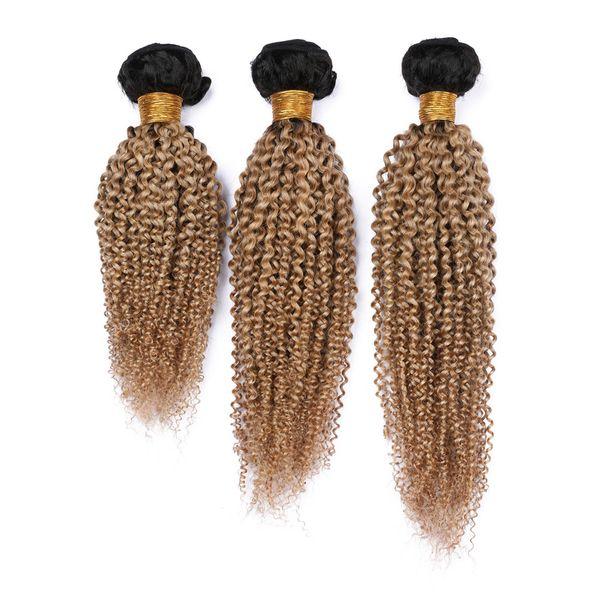 Медовая блондинка Ombre Kinky Curly Индийские пучки плетения человеческих волос 3шт 300Gram # 1B / 27 Темный корень Светло-коричневые пряди волос Ombre Kinky Curly