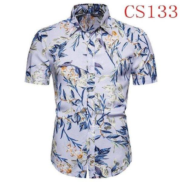 CS133