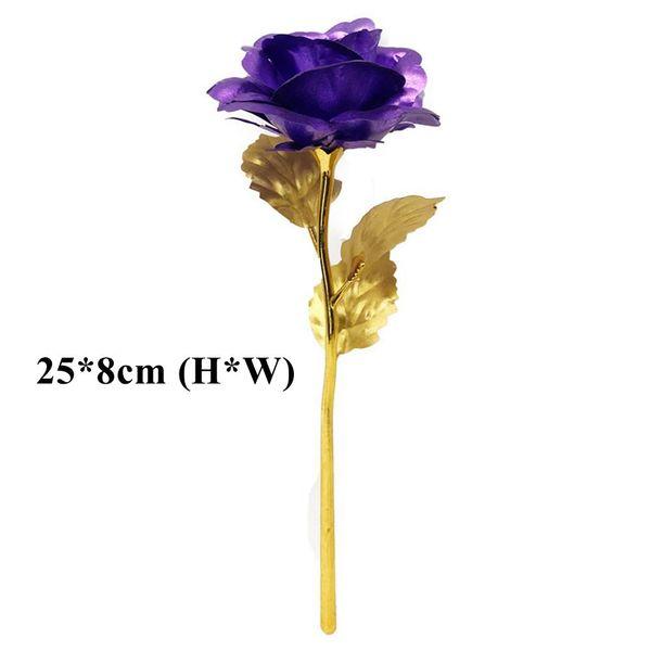 Purple (25 * 8 cm)