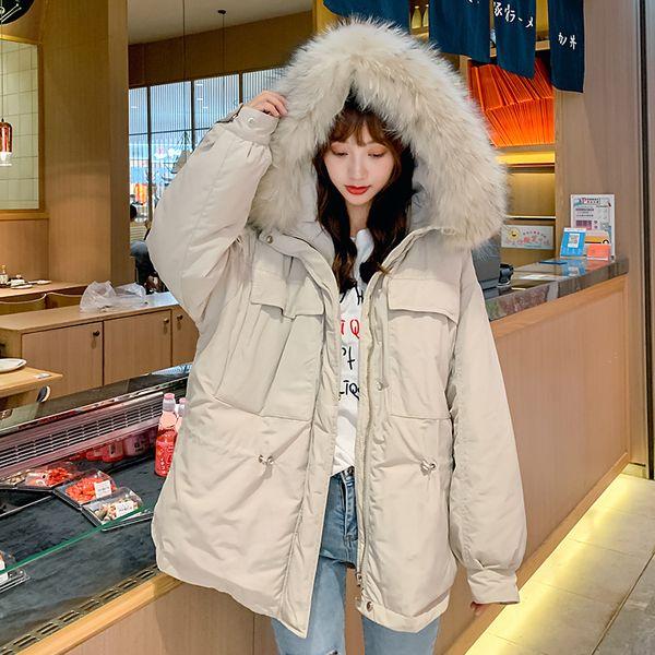 Europa 2019 de invierno nuevo estilo abajo chaqueta de la capa del algodón de Corea del estilo de las mujeres por la chaqueta INS algodón acolchado de gran tamaño capa de las mujeres