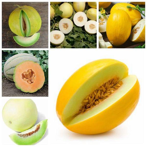 100 pezzi / borsa Mini melone dolce, semi di melone bonsai semi biologici di frutta e verdura, delizioso vaso per piante alimentari per il giardino di casa