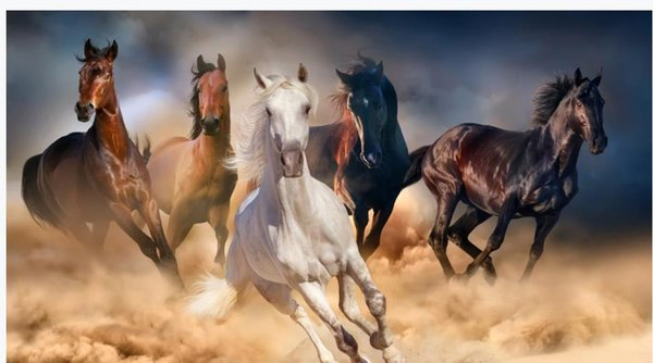 Horse To Success Hd Background Wall Decoration Painting Beautiful Scenery Wallpapers A Hd Wallpapers A Wallpaper Hd From Yiwukuangdu1688 3016