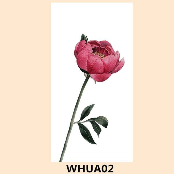 WHUA02