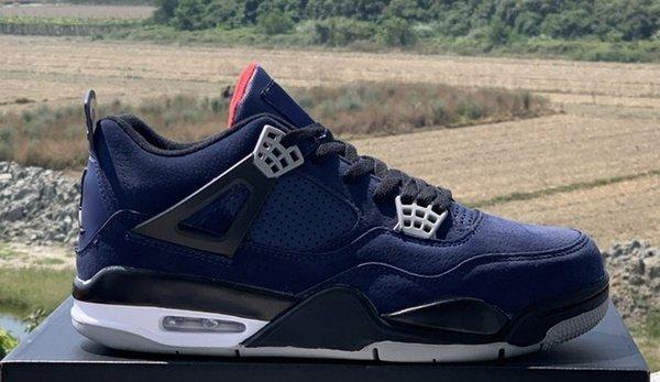 Bleu Loyal