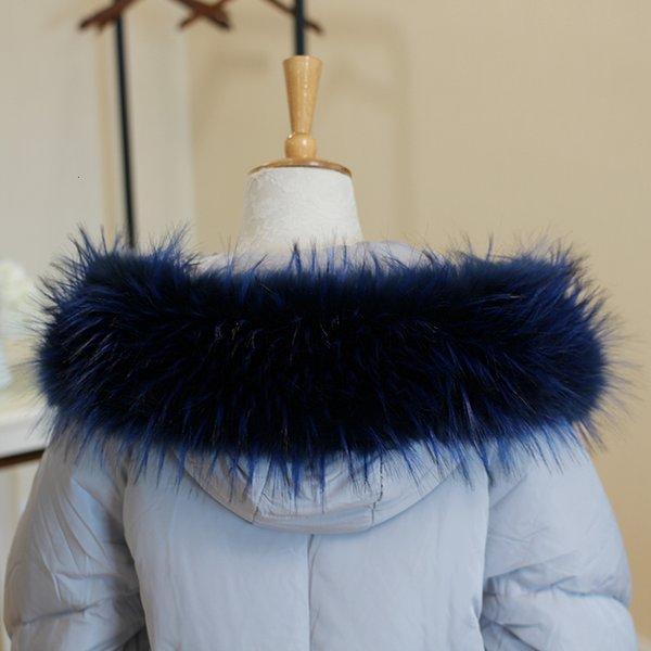 Guaxinim azul royal