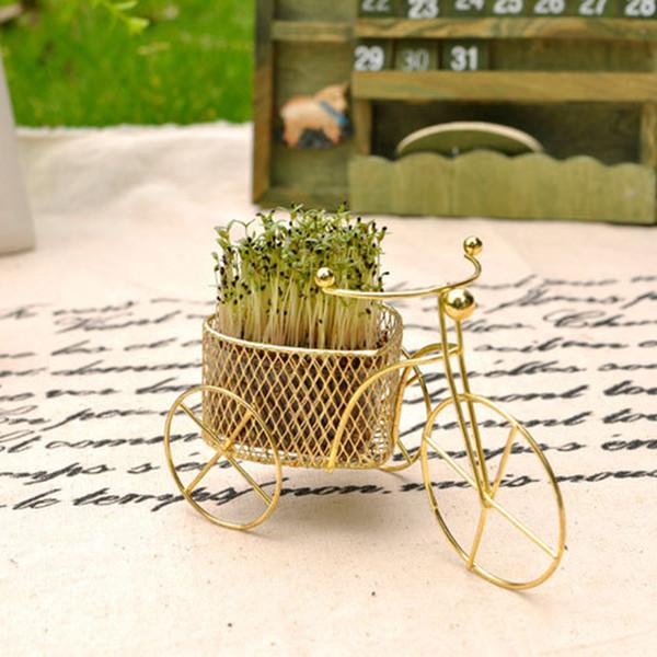 Tohum Ev Bitki Bisiklet Şekli Raf Bahçe Dekor Çim Tohum Ekme Bonsai DIY DIY Bonsai Ev Amp; Bahçe