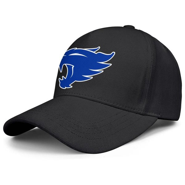 Kentucky Wildcats basketball logo black for men and women baseball cap cool fitted golf hats blank vintage personalized cap unique classi
