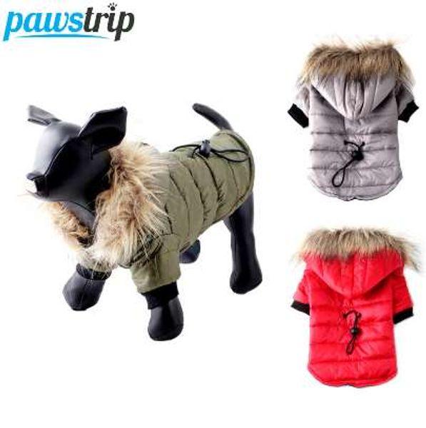 Manteau chaud pour chihuahua
