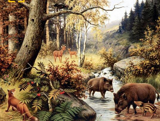 40x50 Pinturas de animales que representan un bosque de acuerdo con los números en el lienzo. Arte de la pared artesanal pintado a mano para la decoración del hogar cocina
