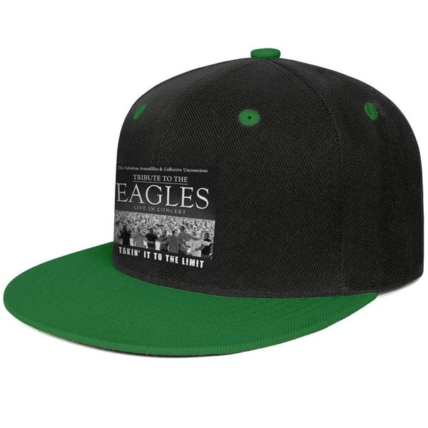 Tribute to the Eagles Takin' It To The Limit Design Hip-Hop Cap Snapback Flatbrim Baseball Hats Custom Adjustable