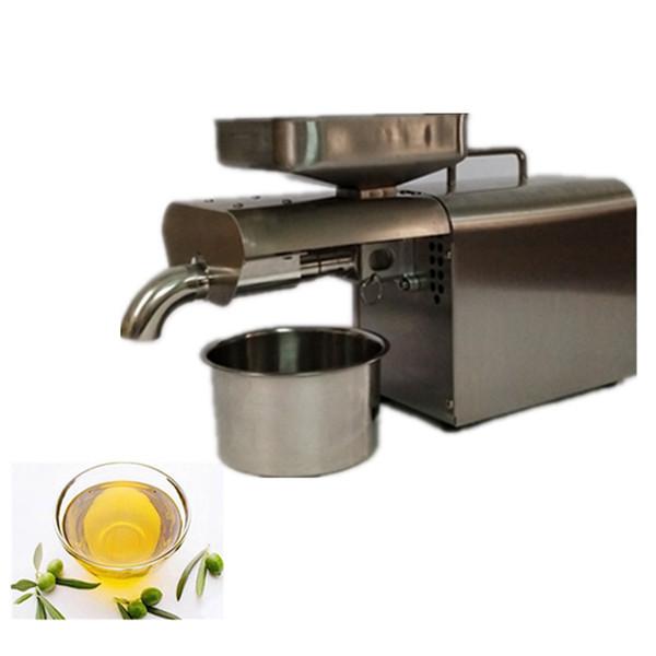 machine d'extraction automatique de l'huile de graines de moringa mini pressoir à huile à vendre