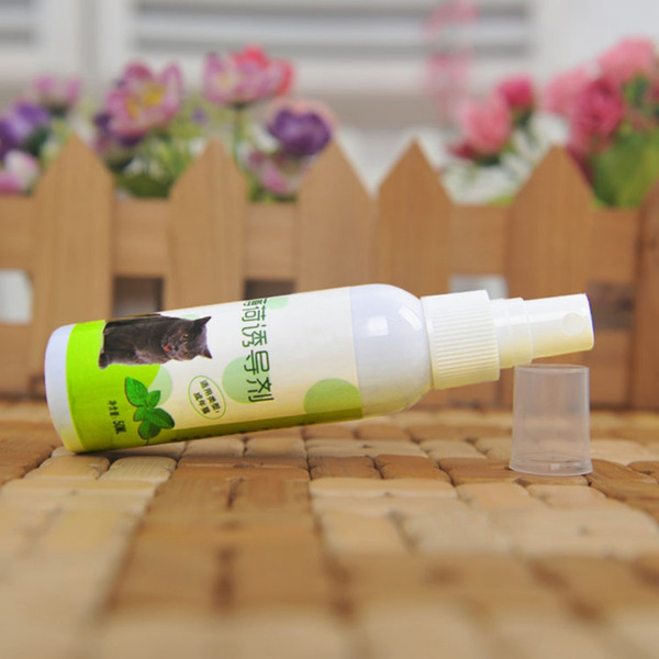 cat supplies catnip organic liquid toys natural healthy pet cat make be excited fresh extract spray