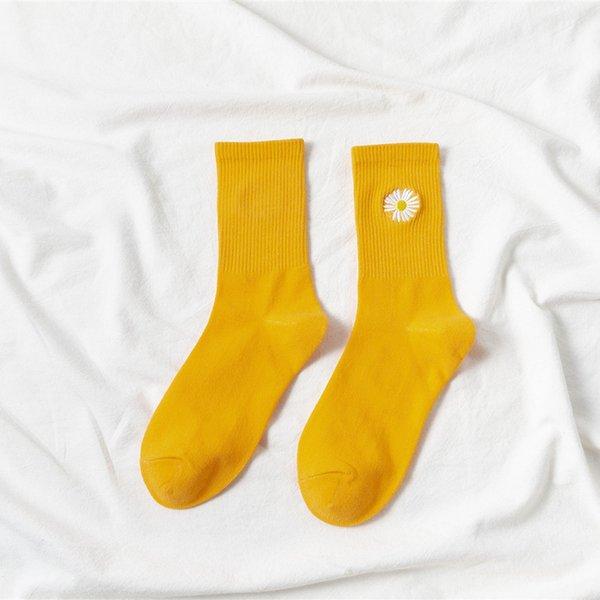 Gengibre Amarelo