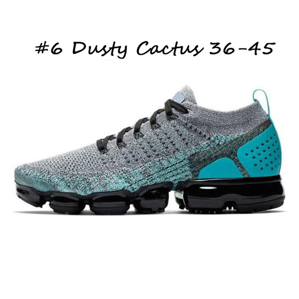 6 Cactus Polvoriento36-45