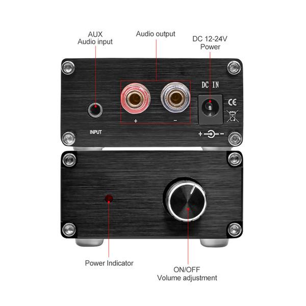AIYIMA Araba Subwoofer Amplifikatör Ses Mono Güç Amplifikatörleri kurulu HIFI Bas Amplificador Subwoofer NE5532 OP AMP 100 W TPA3116 TPA3116D2
