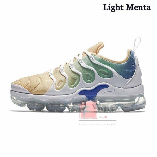 6-Işık Menta