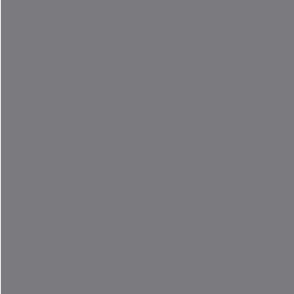 980 gris oscuro
